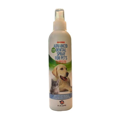 dental spray for dogs sonnyridge dental spray removes tartar plaque and freshens breath instant ebay