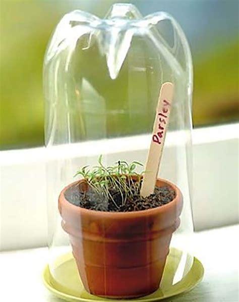 genius seedling greenhouses    today