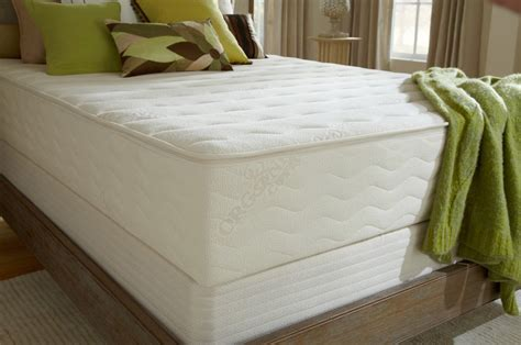 Sleeping Mattress by Plushbeds Botanical Bliss Mattress Review