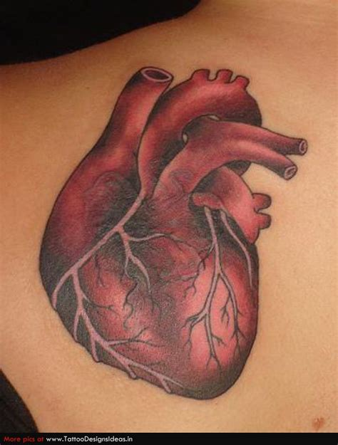 tattoo realistic heart heart tattoos and designs page 161