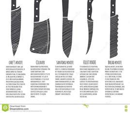 Kitchen Knives Types Types Of Kitchen Knives Stock Vector Image 71951048