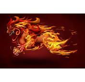 Lion Fire Art HD Wallpaper Background Image  AmazingPictcom
