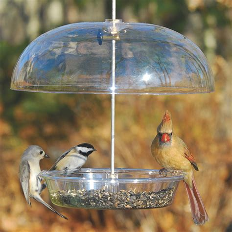 duncraft com aspects vista dome bird feeder