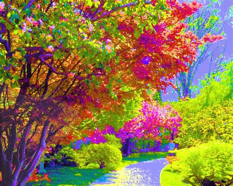 colorful painting painting of colorful trees wallpaper 1 47462 hd wallpapers background
