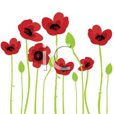 cartoon red poppy tattoo design bild clipart best