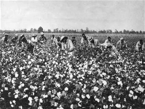 Southern Planters Considered Their Slaves To Be the schedule of a home