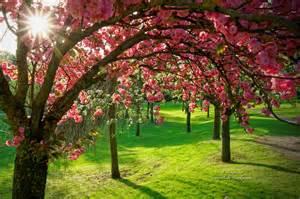 printemps archives