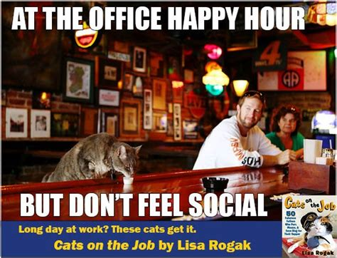 Happy Hour Meme - cats on the job 50 fabulous felines who purr mouse and