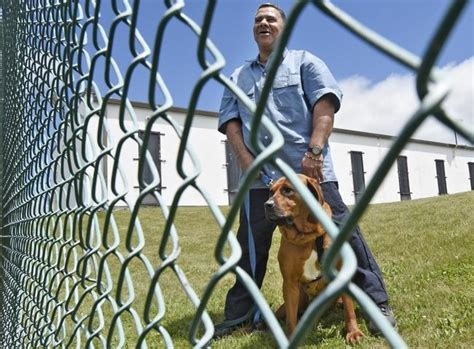 house of dogs worcester celebration marks 1st anniversary of jail dog training program worcester county