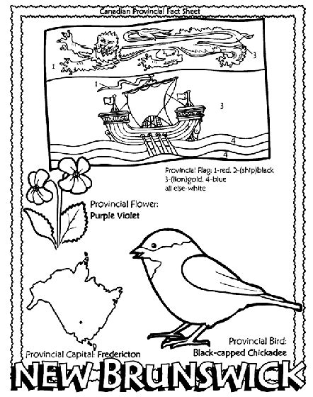 Canadian Province   New Brunswick Coloring Page   crayola.com