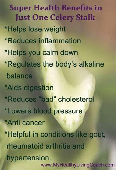 Celery Detox Benefits by Celery Benefits Nutrition Facts Tips Celery