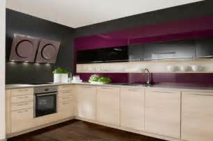 Purple Kitchen Cabinets Promoteinterior Purple Kitchens