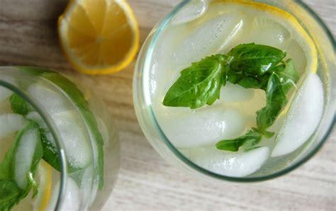 Lemon Basil Detox Tea by Lemon And Basil Iced Tea For Detox Paleo Grubs