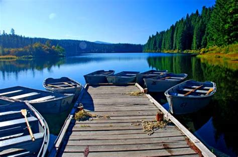 Clear Lake Cabins Oregon by Clear Lake Hiking Fishing Boating Cing Eugene