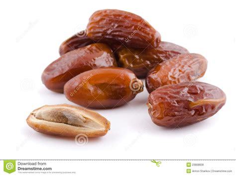 a date date fruit stock photo image of isolated large