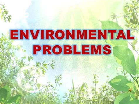 Environment In The Philippines Essay by Environmental Problems And Solutions Essay Exles
