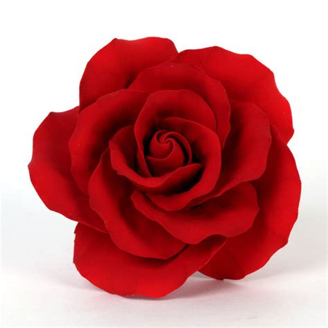 Extra Large Classic Garden Rose   Red