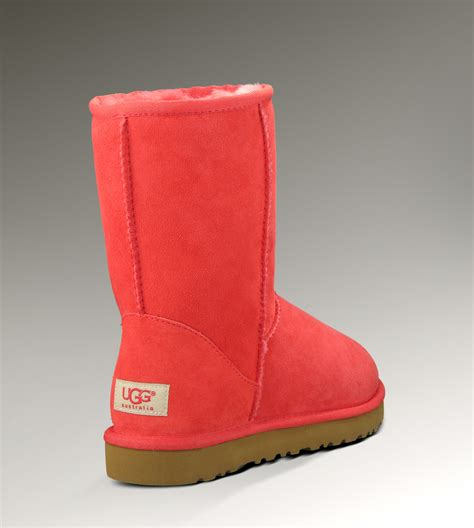 Where Can I Find A Cheap by Can I Find Cheap Ugg Boots