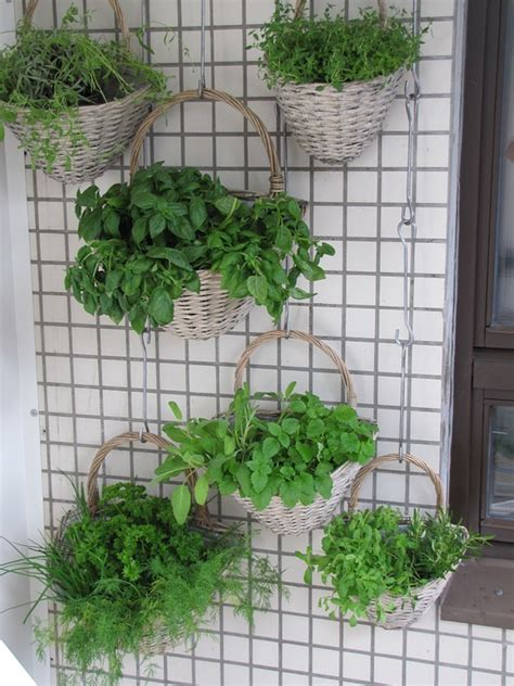 Vertical Garden Benefits Vertical Gardens Benefits Inspiration And Diy 1