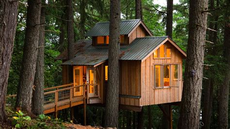 treehouse homes people living in treehouses man of many