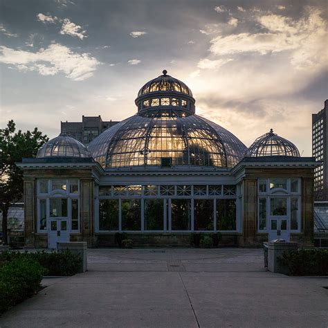 Cool Buy by Daily Dose Of Imagery Allan Gardens Conservatory