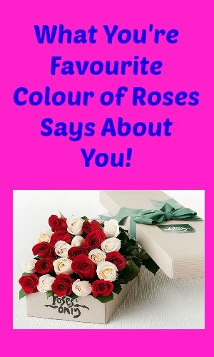 what your favourite colour says about you roses archives my random musings