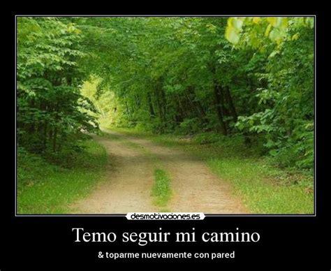 mi camino el camino 1496039033 temo seguir mi camino desmotivaciones