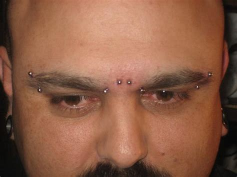 tattoo eyebrow infection eyebrow piercings types and aftercare tips western
