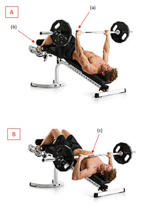decline barbell bench press chest workout with barbell most popular workout programs