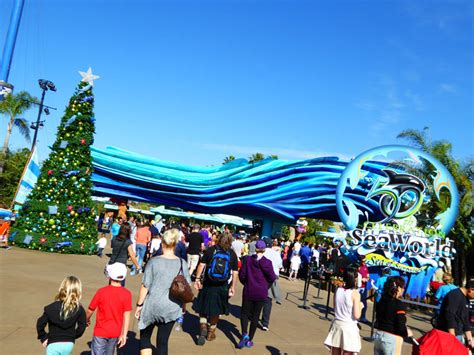 best christmas trees in san diego highlights at seaworld san diego the best of 174 magazine crockpot recipes