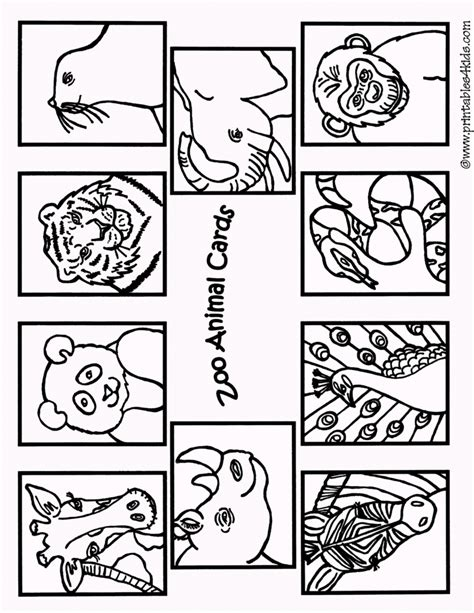 zoo map coloring page zooanimals free colouring pages