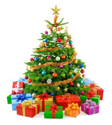 weihnachtsbaum regionale schule burg stargard