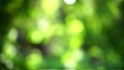 Dslr Hd Background by Dslr Blur Background Hd Background Ideas