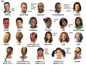 american haircut names bald adjective definition pictures pronunciation and