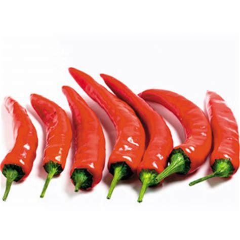 sudut bahasa malaysia gambar sayur sayuran