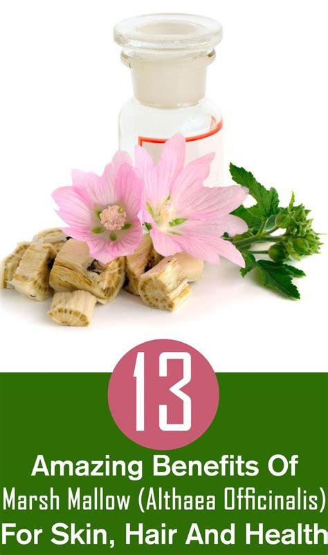 Officinalis Detox 1000 images about total changes iaso tea detox on