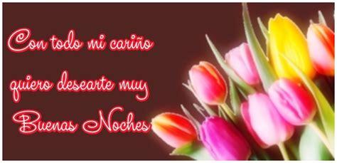 imagenes buenas noches flores im 193 gen de buenas noches con flores para whatsapp 8