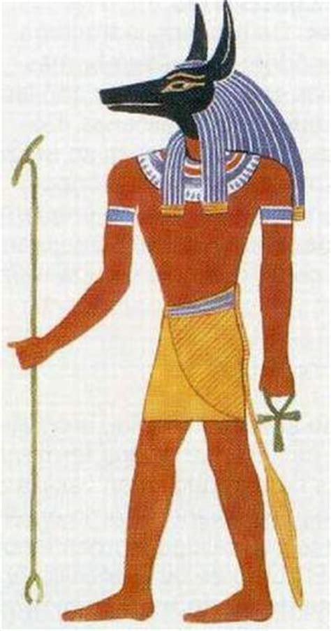 il dio egizio con testa di sciacallo le divinit 224 degli egizi imparo