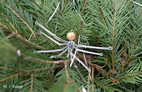 why are spider webs a popular christmas tree decoration legends of tinsel and spiders bug of the week