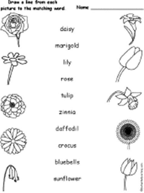 2 fruits that are anagrams of each other flowers at enchantedlearning