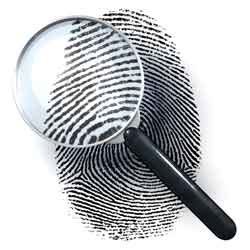 Criminal Background Investigation Executive Level Background Checks Sapient Investigations Inc
