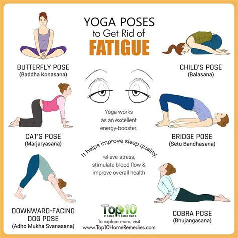 fatigue tutorial questions 424 best natural health images on pinterest health care