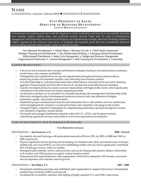 business marketing development resume