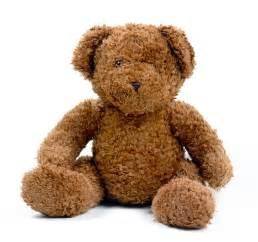 teddy bears teddy pictures gallery freaking news