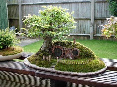 bonsai haus bonsai kunstwerke chris guise