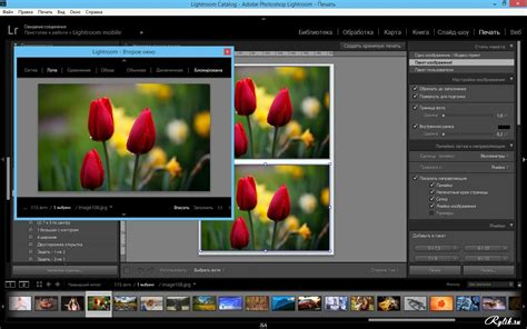 lightroom software full version free download lightroom download free full version