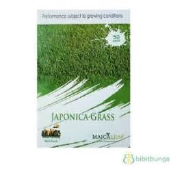 Biji Rumput Jepang benih rumput jepang 50 biji maica leaf bibitbunga