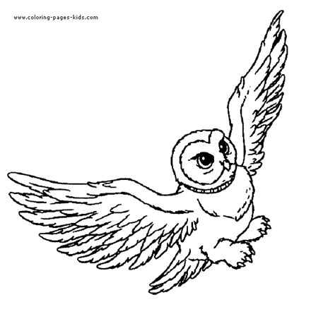 harry potter owl coloring pages harry potter hedwig owl coloring pages