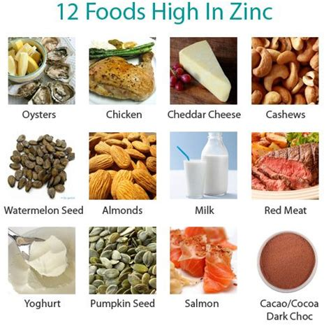 vitamins and minerals to stop hair loss natural fitness tips the 25 best ideas about zinc foods on pinterest raw