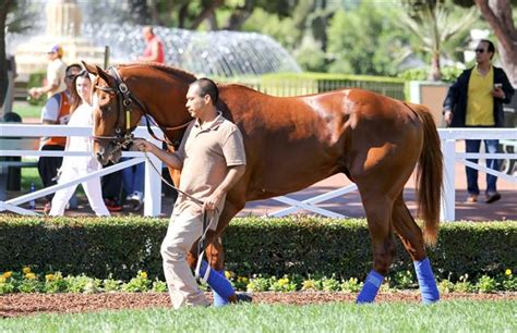 STABLE NOTES BY ED GOLDEN   SUNDAY, MARCH 18, 2018   Santa